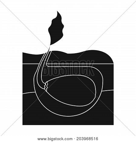 Root, single icon in black style .Root vector symbol stock illustration .