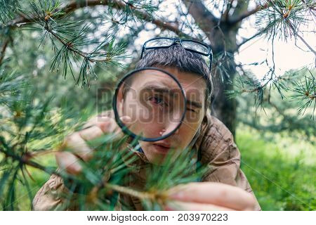 Picture of man with magnifying glass next to pine in forest on summer day