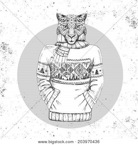 Retro Hipster fashion animal cheetah dressed up in pullover. Hipster animals