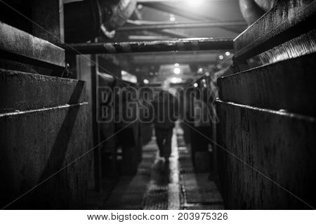 Silhouette of a worker in an industrial room. Monochrome photo. Background for web design