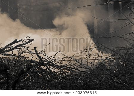 Smoke from burning dry branches. Monochrome photo. Background for web design