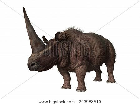 3D Rendering Rhinoceros Elasmotherium On White