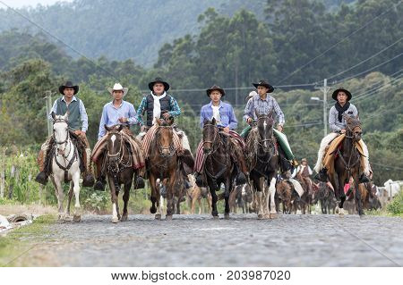 May 27 2017 Sangolqui Ecuador: a group of cowboys on horseback galloping on a country road in the Andes