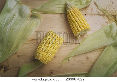 Sweet corns. Fresh corn on cobs on wooden table.