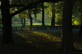 First sunrays at autumn morning in Topcider park, Belgrade, Serbia poster