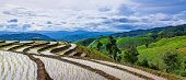 Panorama view of little hut and Rice terrace in a cloudy lighting surrounded by trees and mountains at Pa Bong Piang near Inthanon National Park and Mae Chaem Chiangmai Thailand. poster