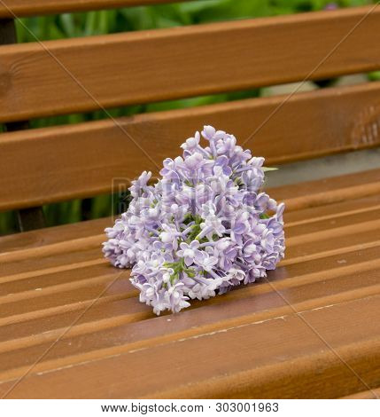 Branch Of Large Purple Flowers Lilac On A Wooden Bench