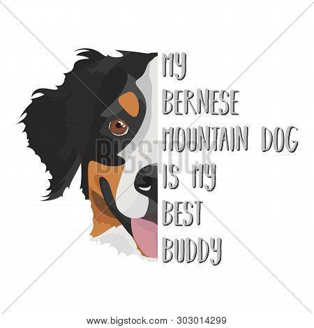 Illustration Dog Bernese Mountain Dog - My Bernese Mountain Dog Is My Best Friend. Puppy Dog eyes,