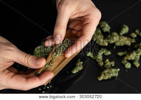 Man Rolling A Marijuana Joint. Man Preparing And Rolling Marijuana Cannabis Joint. Close Up. Close U