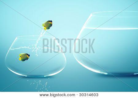 Anglefish in kleinen Goldfischglas gerade Goldfische Sprung ins große Goldfischglas