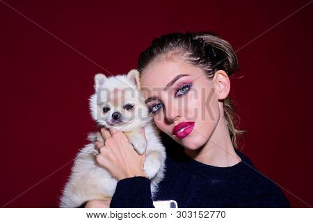 Sensual Woman With Small Dog. Woman In Black Sweater Embracing Pomeranian Spitz Dog. Woman Holds Pom