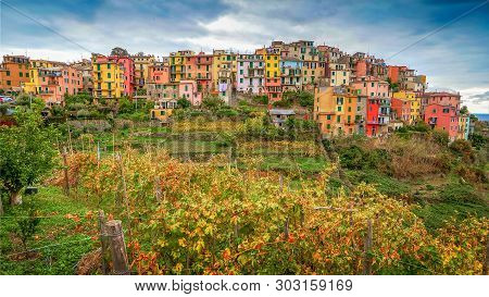 The Cinque Terre Village Of Corniglia Sits On A Terraced Hillside Used For Vineyards In The Province