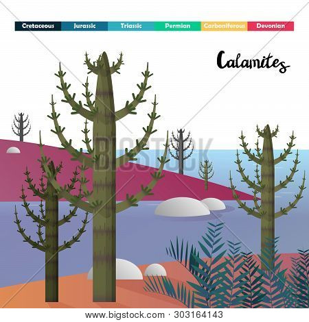Calamites Horsetails Age Plants Prehistoric Vector Illustration