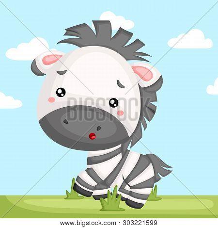 A Vector Of A Adorable Zebra In A Grass
