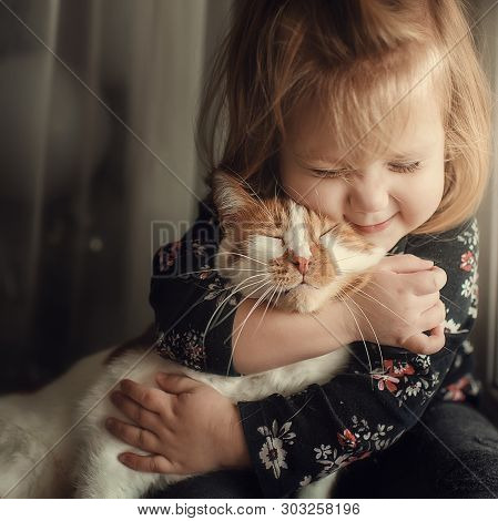 Portrait Of A Small Cute Child With A Bald Head That Embraces With Tenderness And Love A Red Cat And