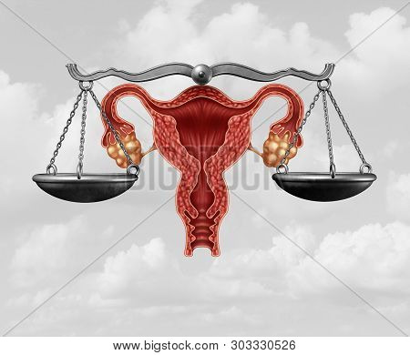 Abortion Legislation And Reproductive Justice As A Legal Concept For Reproduction Rights Law  By Gov
