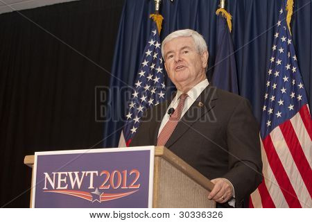 Candidato presidencial Newt Gingrich