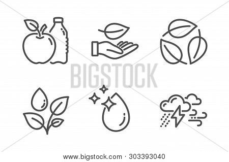 Leaves, Plants Watering And Apple Icons Simple Set. Leaf, Water Drop And Bad Weather Signs. Nature L