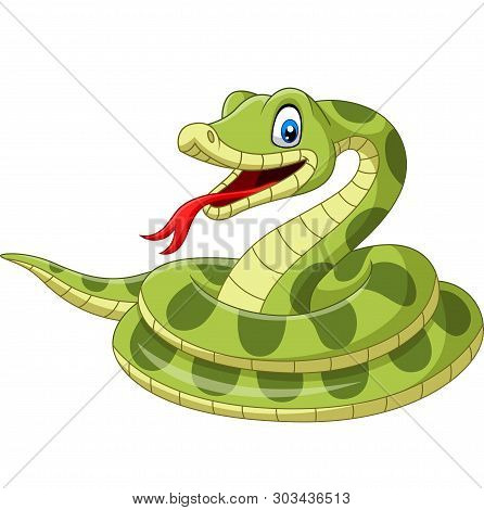 Cartoon Green Snake On A White Background