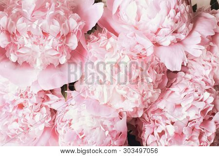 Beautiful Bouquet Of Pink Peony Flowers. Top View Or Flat Lay..