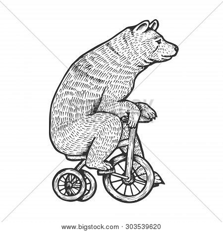 Circus Bear On Bicycle Sketch Engraving Vector Illustration. Scratch Board Style Imitation. Hand Dra