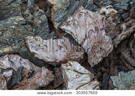 Grey, fresh lava field and glossy rocky land near Volcano Tolbachiskiy. Bizarre formations on the lava fields. Kamchatka Peninsula in the far east of Russia. poster