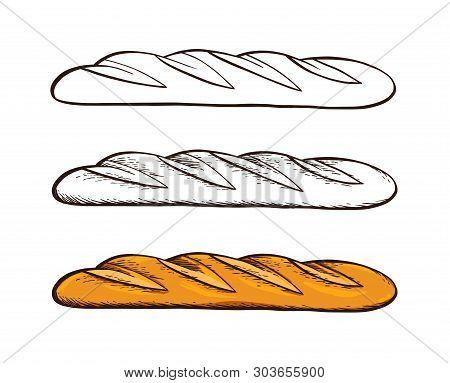 Set Of Hand Drawn Vector. White Bread. Baguette. Color Vintage Engraving Illustration For Poster, La
