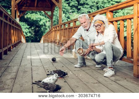 Contended Spouses Giving The Crumbs To Doves On The Bridge