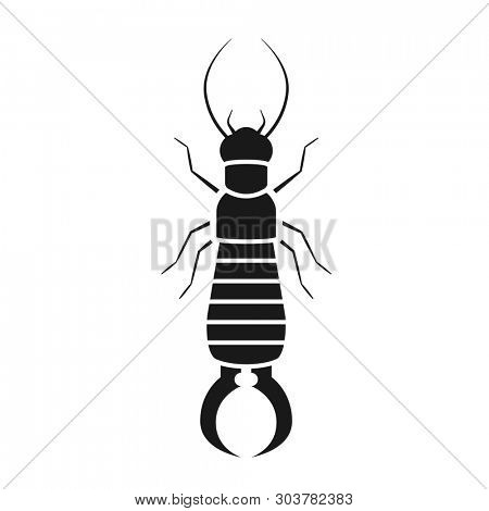 Earwig bug silhouette. Pest control clipart isolated on white background