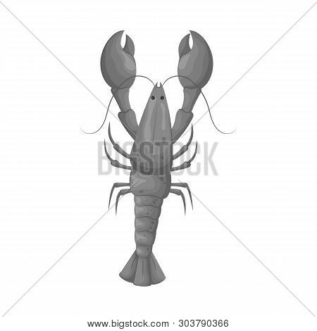 Vector Illustration Of Crayfish  And Lobster Symbol. Set Of Crayfish  And Boiled Vector Icon For Sto
