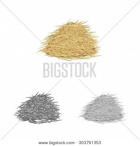 Vector Illustration Of Bagasse And Raw  Sign. Set Of Bagasse And Waste Stock Symbol For Web.