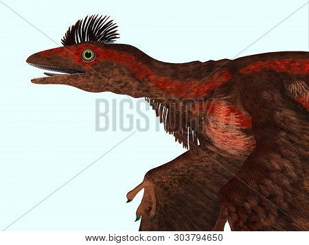 Microraptor Dinosaur Head 3d Illustration - Microraptor Was A Carnivorous Flying Reptile That Lived