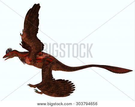 Microraptor Side Profile 3d Illustration - Microraptor Was A Carnivorous Flying Reptile That Lived I