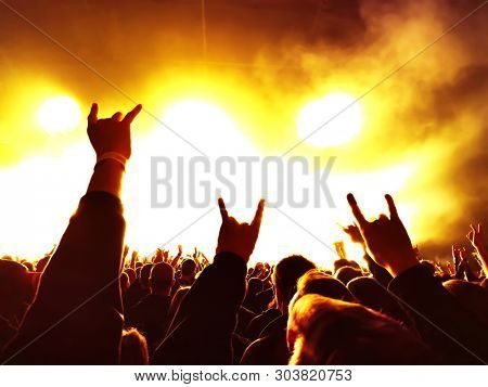 cheering crowd at rock concert