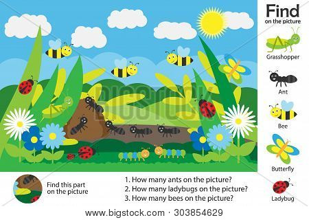 Activity Page, Glade Picture In Cartoon Style, Find Images And Answer The Questions, Visual Educatio