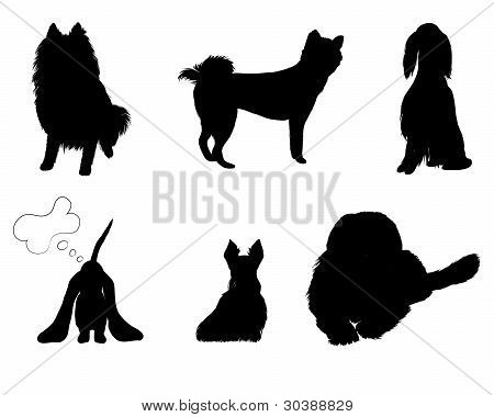 silhouettes set breeds of dog