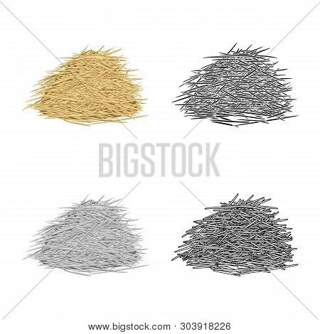 Isolated Object Of Bagasse And Raw  Logo. Set Of Bagasse And Waste Stock Vector Illustration.