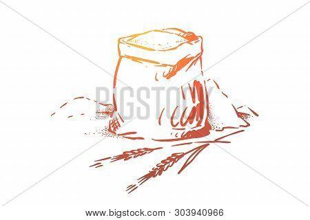 Bread, Dough, Pastry Ingredient, Cereal Grains Harvest, Powder Heap, Rye, Barley Spikes, Bakehouse,