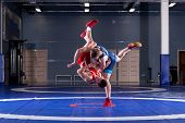 Two strong wrestlers in blue and red wrestling tights are wrestlng and making a  making a hip throw  on a yellow wrestling carpet in the gym. Young man doing grapple. poster