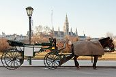 Fiaker carriage in Vienna Austria historic mode of transport poster