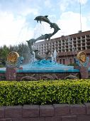 Five Dolphin fountain in bangsaen Thailand poster