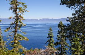 Summer Landscape With Blue Lake Tahoe, Trees And Mountains.