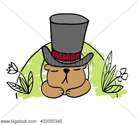 Funny Illustration For Celebration Groundhog Day With Groundhog In A Top Hat, Isolated On White Back