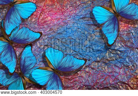 Blue Morpho Butterflies On Bright Shining Background. Gold, Blue And Pink Texture Background. Colorf