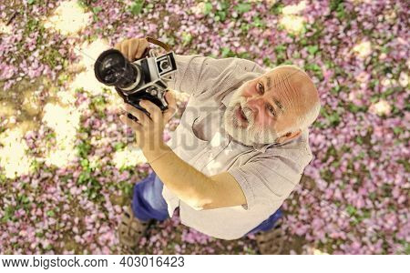 Active Day. Photographer Taking Photo Of Apricot Bloom. Spring Season With Pink Flower. Old Man Watc