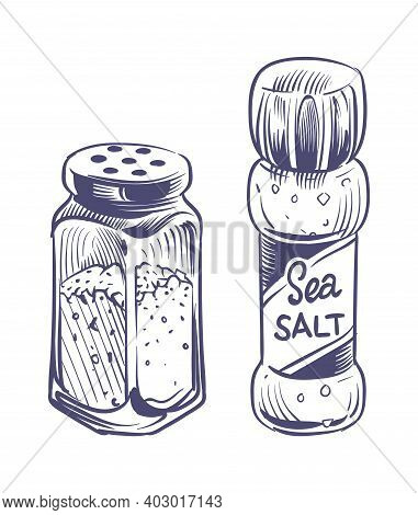 Salt Shaker. Glass Bottles Salting Powder And Crystals Hand Drawn Sketch Illustration, Saltshaker Wi