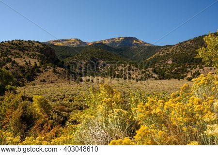 Fall Colors Creep Into Southern Utah Along Roadside