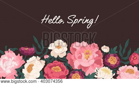 Horizontal Floral Backdrop With Border Of Delicate Blossomed Spring Peonies Flowers And Hello Spring