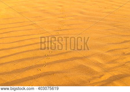 Pattern Of Golden Sand On A Beach In The Summer With Chain Of Tracks. The Textured Surface Of Sand O