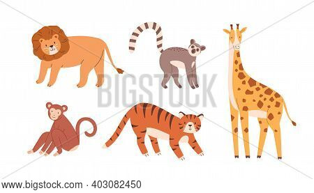 Set Of Cute Zoo Or Wild Animals. Lion, Sloth, Giraffe, Monkey And Tiger. Collection Of Terrestrial M